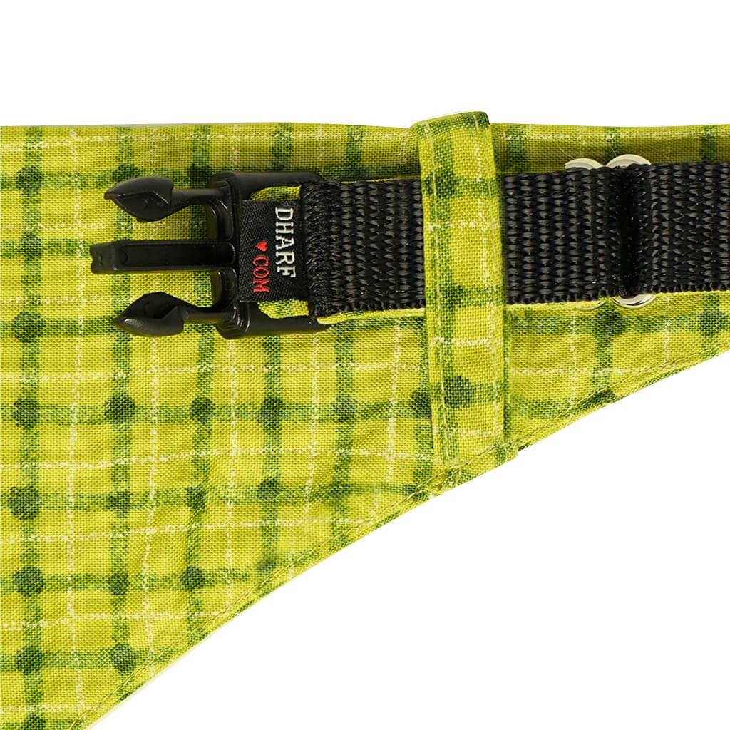 Dog Bandana, Collar and Leash Set - GREEN SQUARES - Dharf - 3