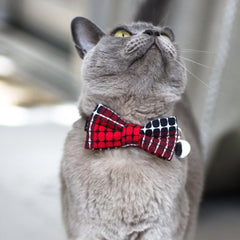 Cat Bow Tie and Collar: Cross Stitch