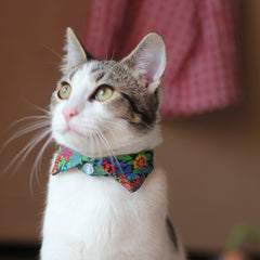 Pawliday Cat Shirt Collar