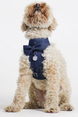 Dog Bow-tie Harness - Jean