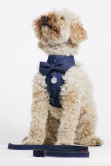Dog Bow-tie Harness & Leash : Jeans