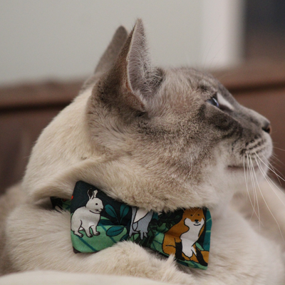 NEW Cat Collar and Bow Tie : Jungle Fever