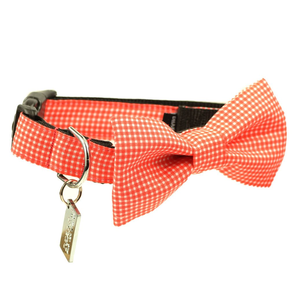 Dog Bow Tie and  Collar Set : Orange Gingham - Dharf - 1