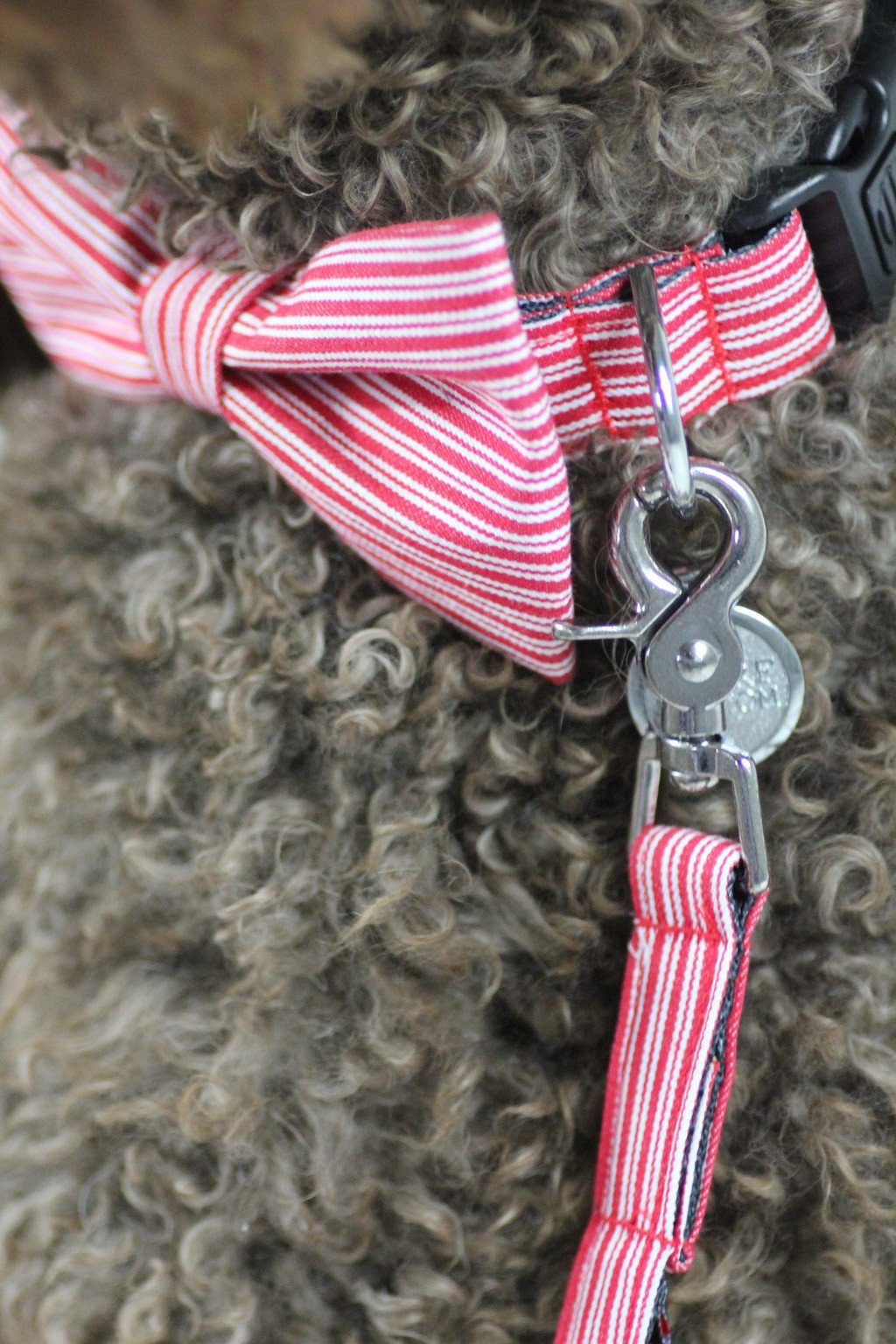 Dharf dog bow tie, collar and leash in red pinstripes