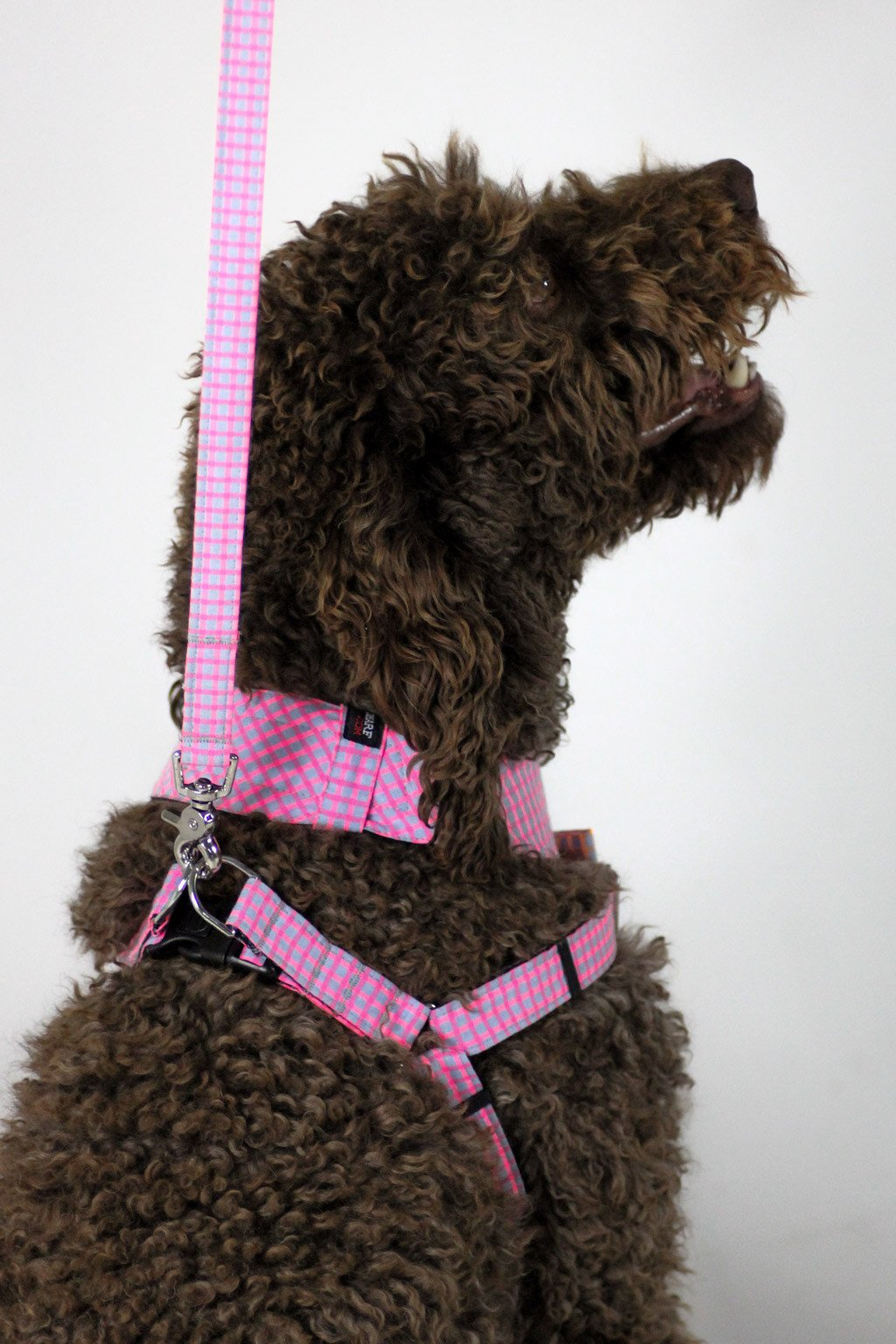 Dog Bow-tie Harness - Pink Jeans