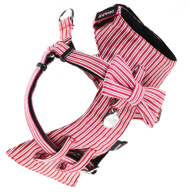 Dharf dog bow tie harness in red pinstripes