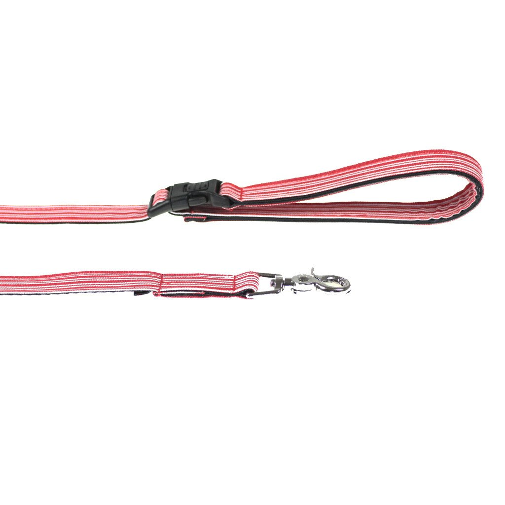 Dog Leash : Red Pin Stripe