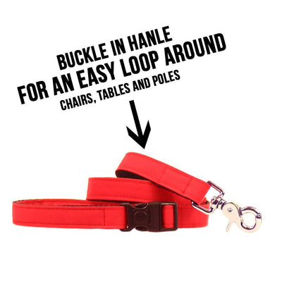 Dharf water repellent red lead with lockable buckle for looping around poles