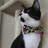 NEW Cat Collar and Bow Tie : Rose & Hubble