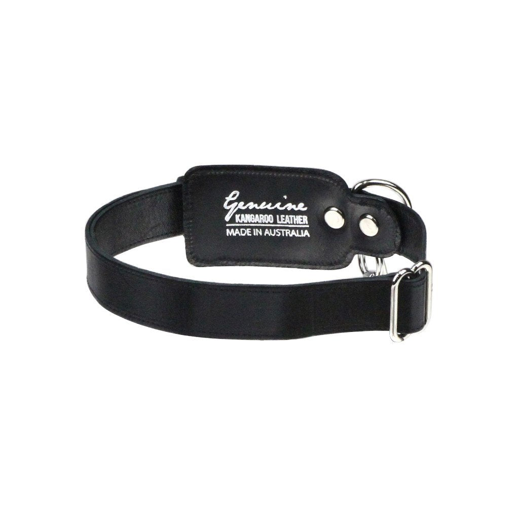 Leather Dog Collar: Black - Dharf - 6
