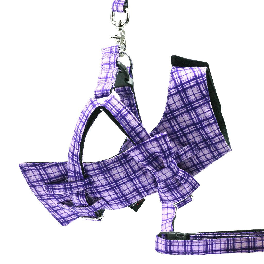 Dog Bow-tie Harness & Leash : Purple Criss-Cross - Dharf - 1