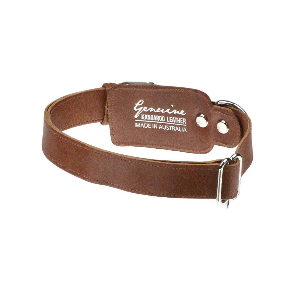 Leather Dog Collar: Whisky Brown - Dharf - 3