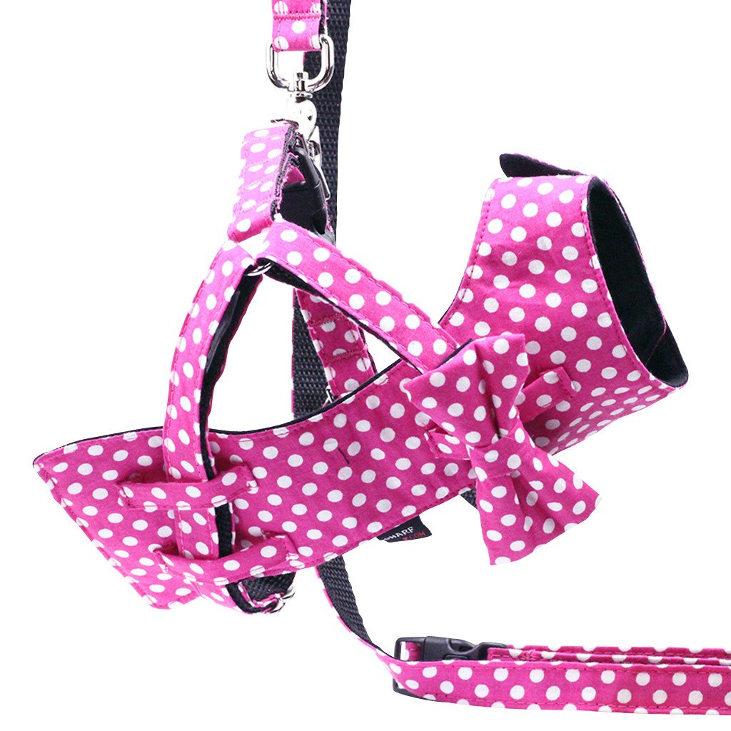 Dog Bow-tie Harness & Leash : Fuchsia Polka - Dharf - 1