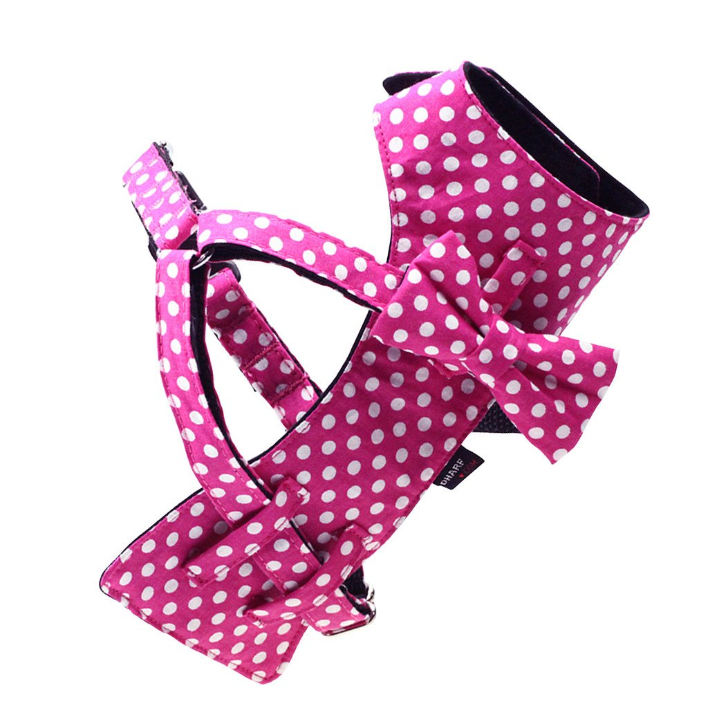 Dog Bow-tie Harness & Leash : Fuchsia Polka - Dharf - 4