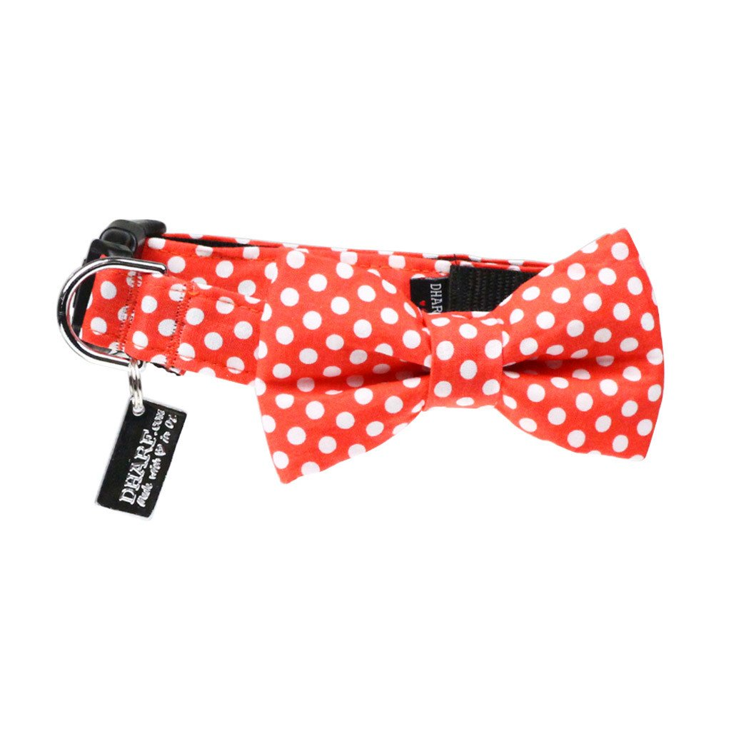 Dog Bow Tie and Collar Set : Orange Polka - Dharf - 1