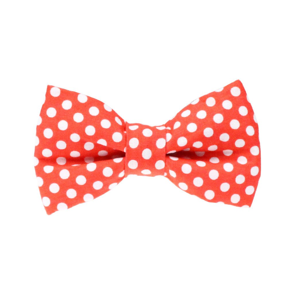 Dog Bow Tie : Orange Polka - Dharf - 1