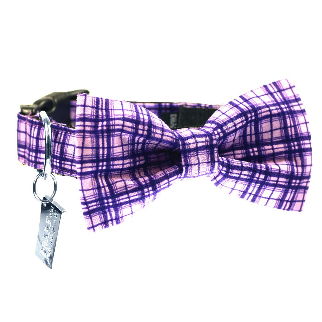 Dog Bow Tie and  Collar Set : Purple Criss-Cross - Dharf - 1