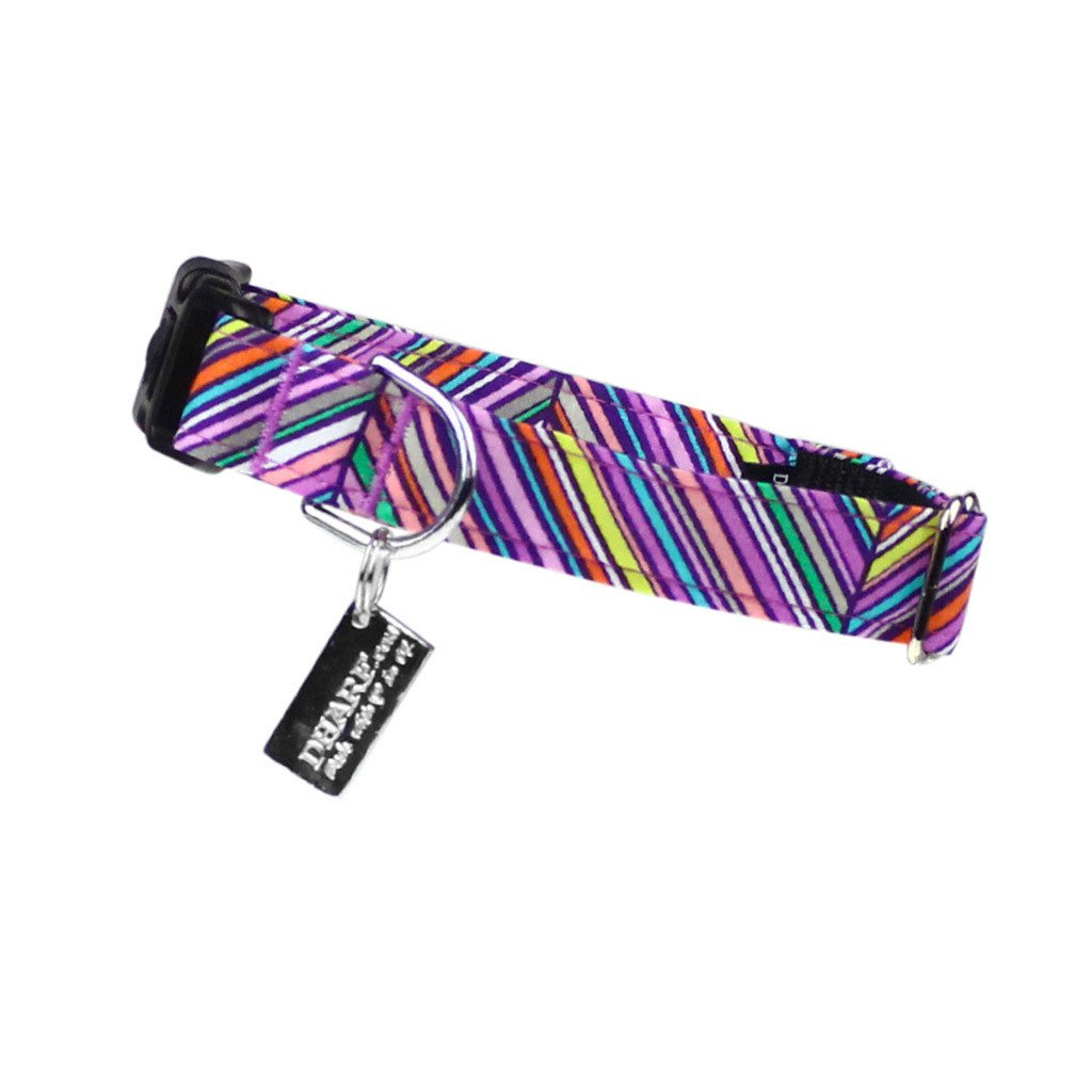 Dog Collar : Purple Rainbow - Dharf - 1