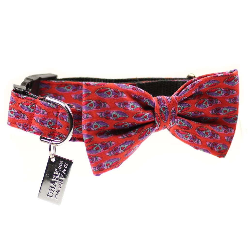 Dog Bow Tie and  Collar Set : Feather Orange - Dharf - 1