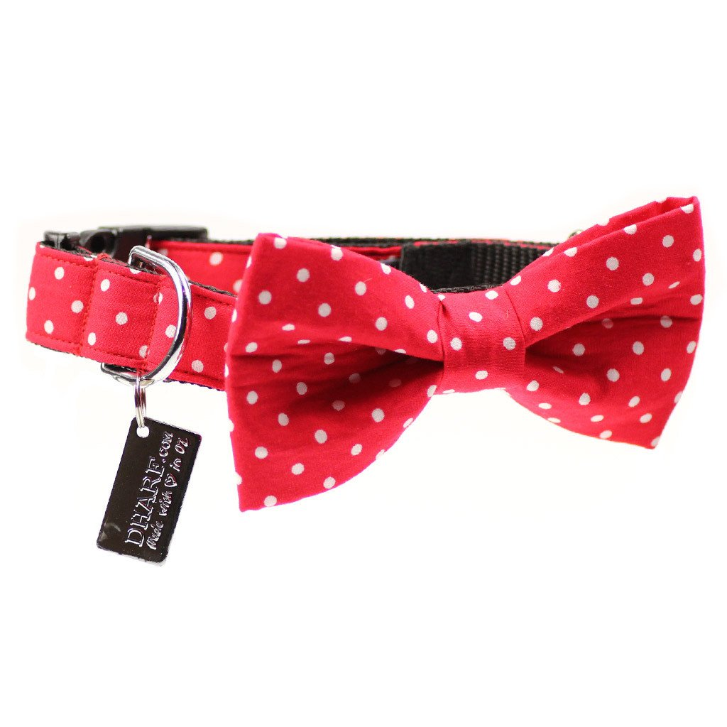 Dog Collar, Bow tie and Leash Set : Red Polka - Dharf - 5