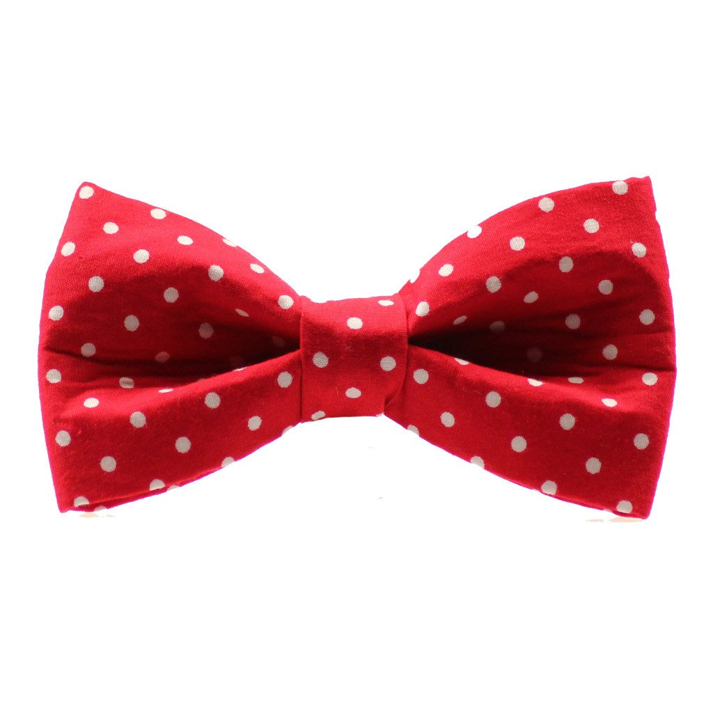 Dog Collar, Bow tie and Leash Set : Red Polka - Dharf - 4