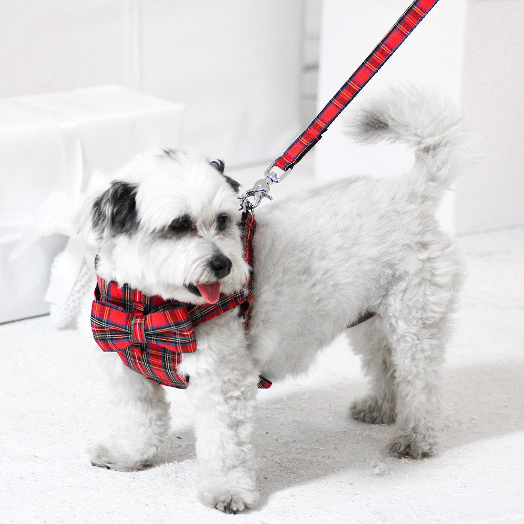 Dog Bow-tie Harness : Red Tartan - Dharf - 3