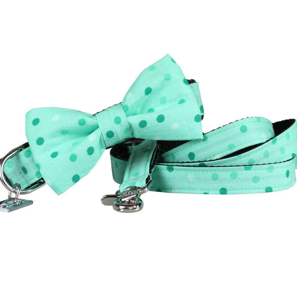 Dog Collar, Bow tie and Leash Set : Spotty Mint Green - Dharf - 1