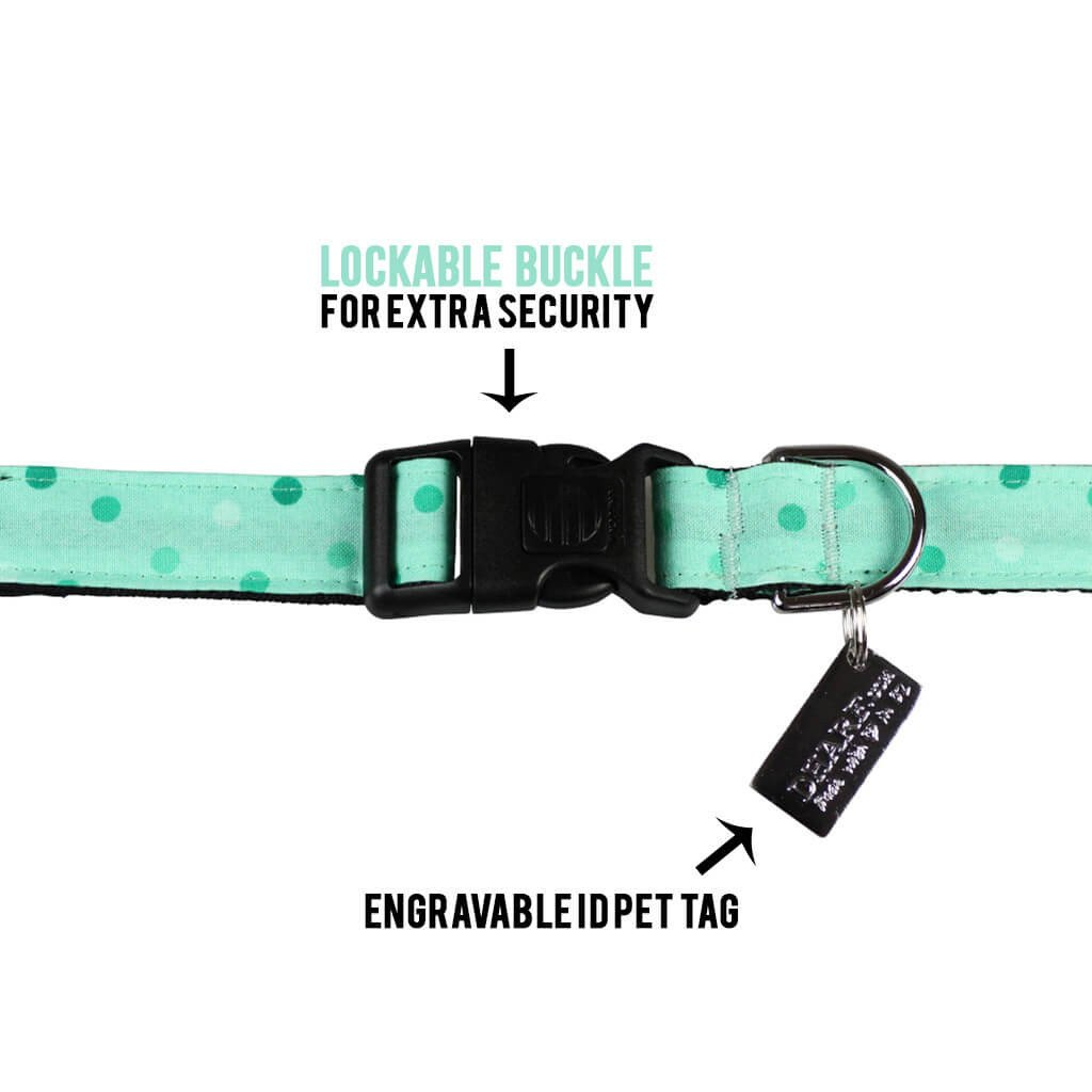 Dog Collar : Spotty Mint Green - Dharf - 2