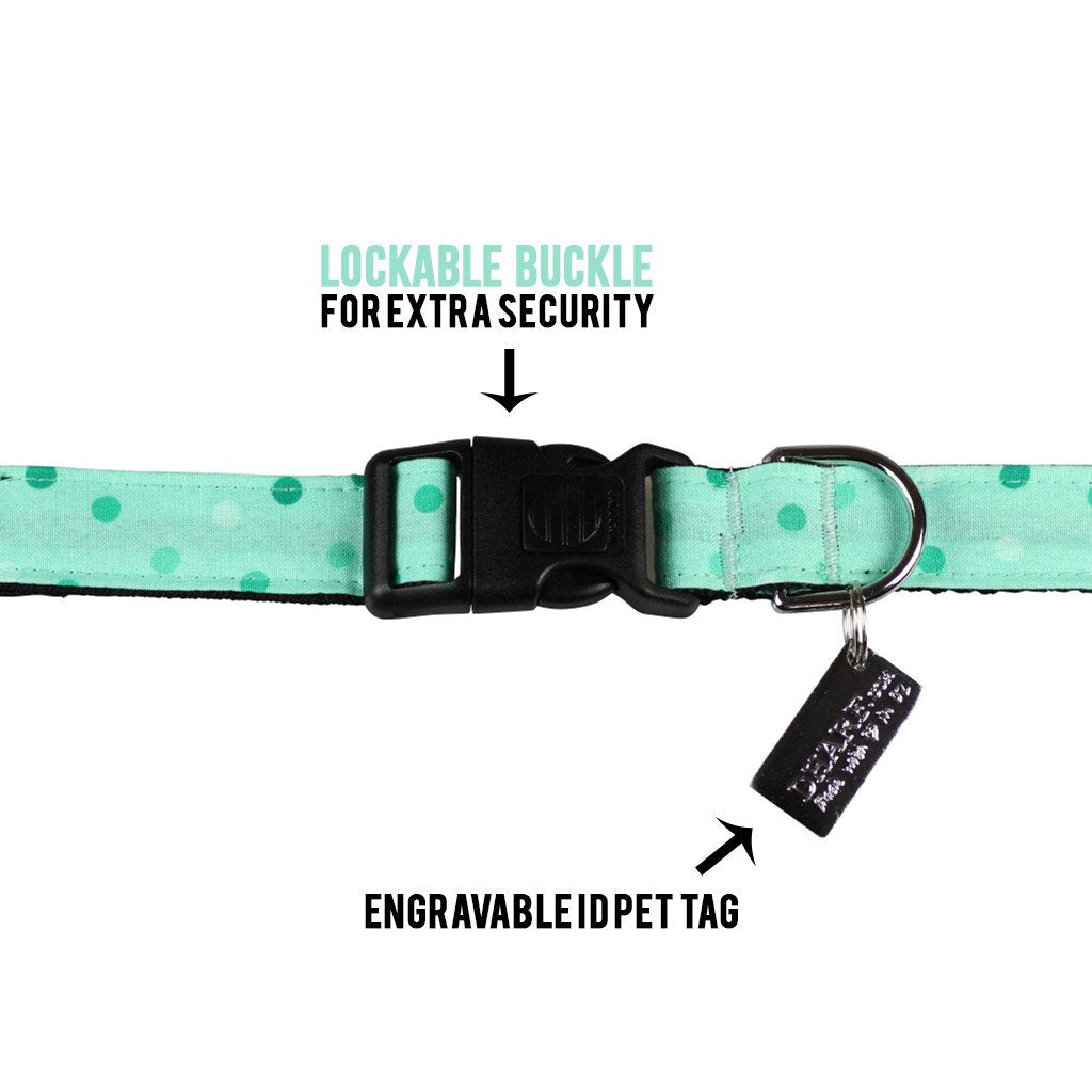 Dog Collar, Bow tie and Leash Set : Spotty Mint Green - Dharf - 5