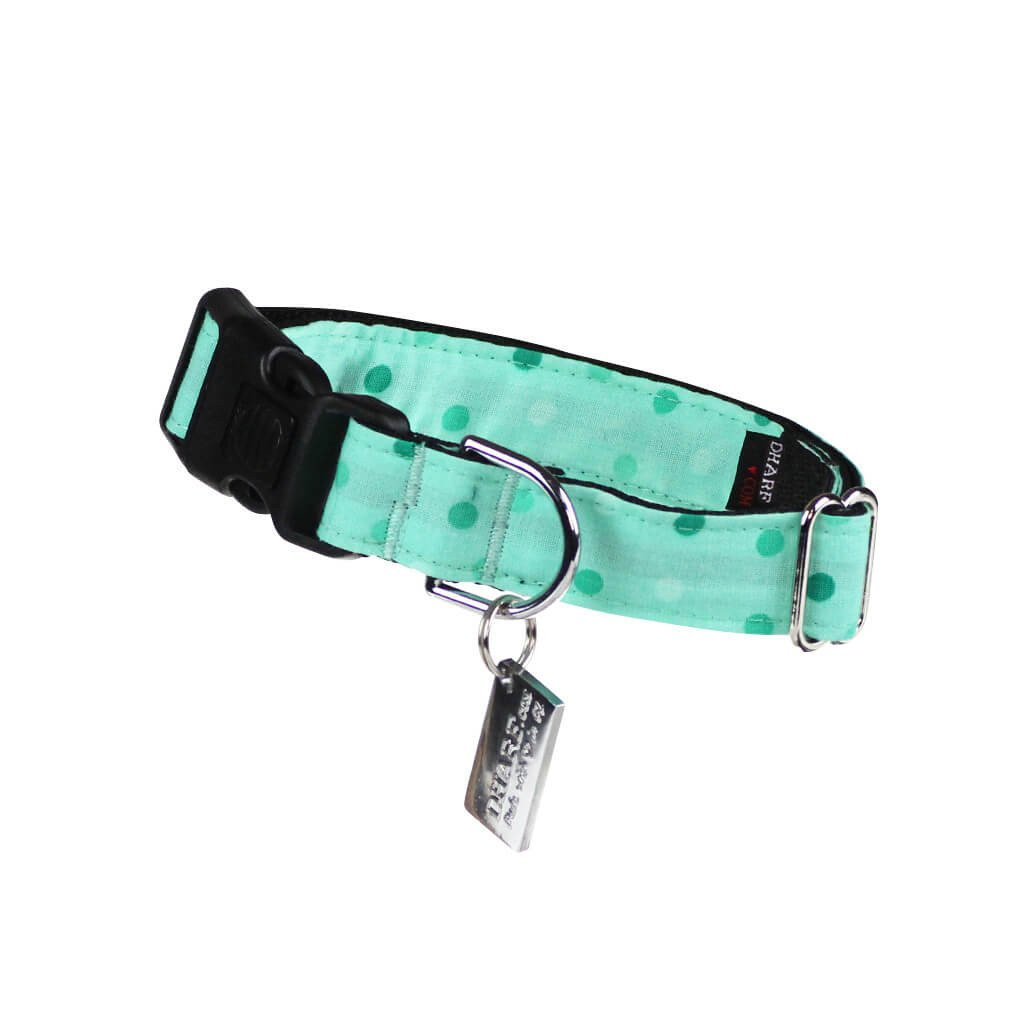 Dog Collar : Spotty Mint Green - Dharf - 1