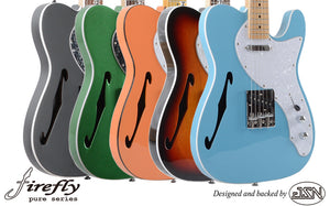 FFPTH Semi-Hollow Body Guitars