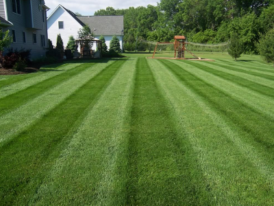 lawn care plainfield