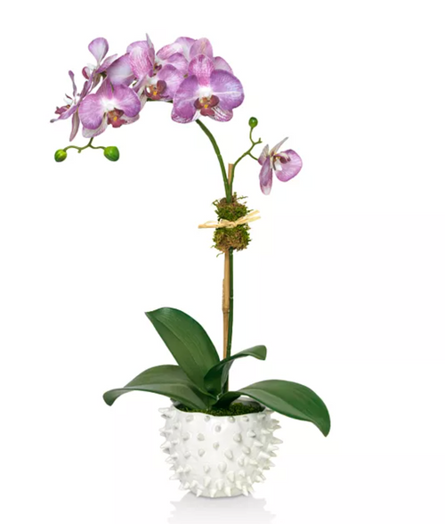 Diane James Home Purple Orchid Faux Floral Arrangement