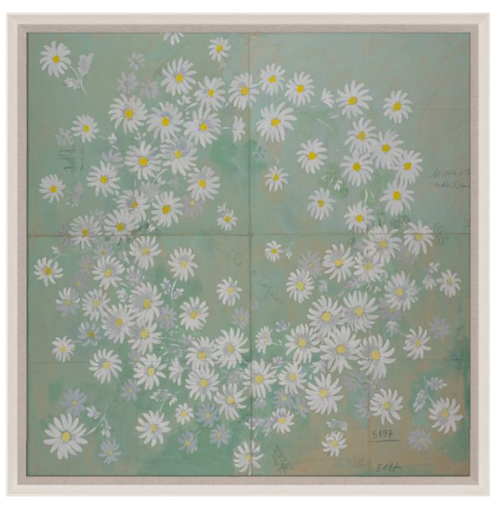 Natural Curiosities Paule Marrot Daisies Artwork