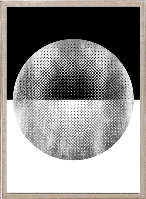 Natural Curiosities Halftone Circles Silver Framed Artwork