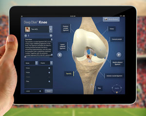 person viewing orthopedic deep dive on ipad
