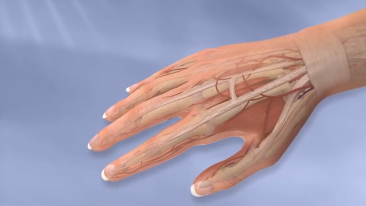Hand and Wrist Procedures