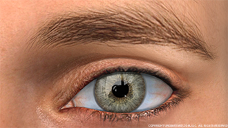Eye Male Image