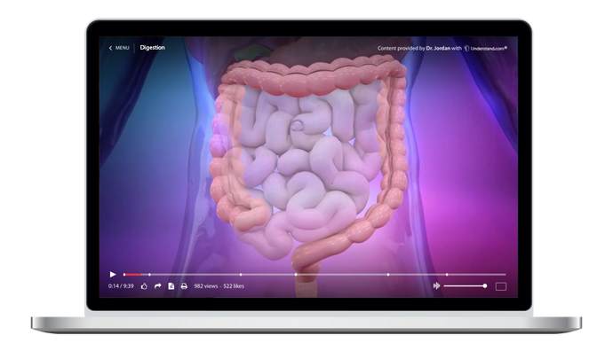 Digestive System Animation Library