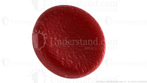 Red Blood Cell Image