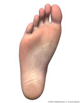Foot Male Right Plantar Image