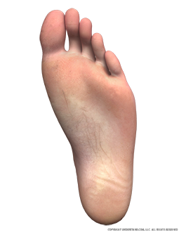 Foot Male Left Plantar Image
