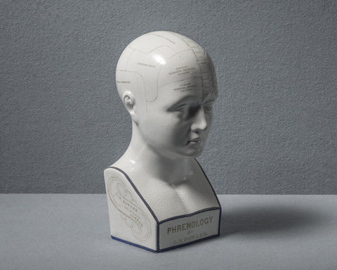 Original Antique Phrenology Head, circa 1855
