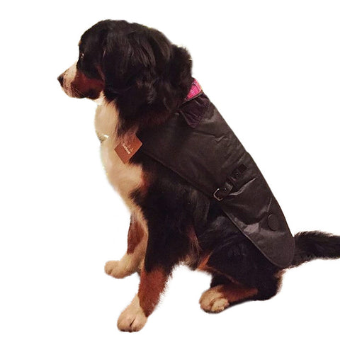 Barbour Dog Coat in Black Wax Cotton UAC0005BK71