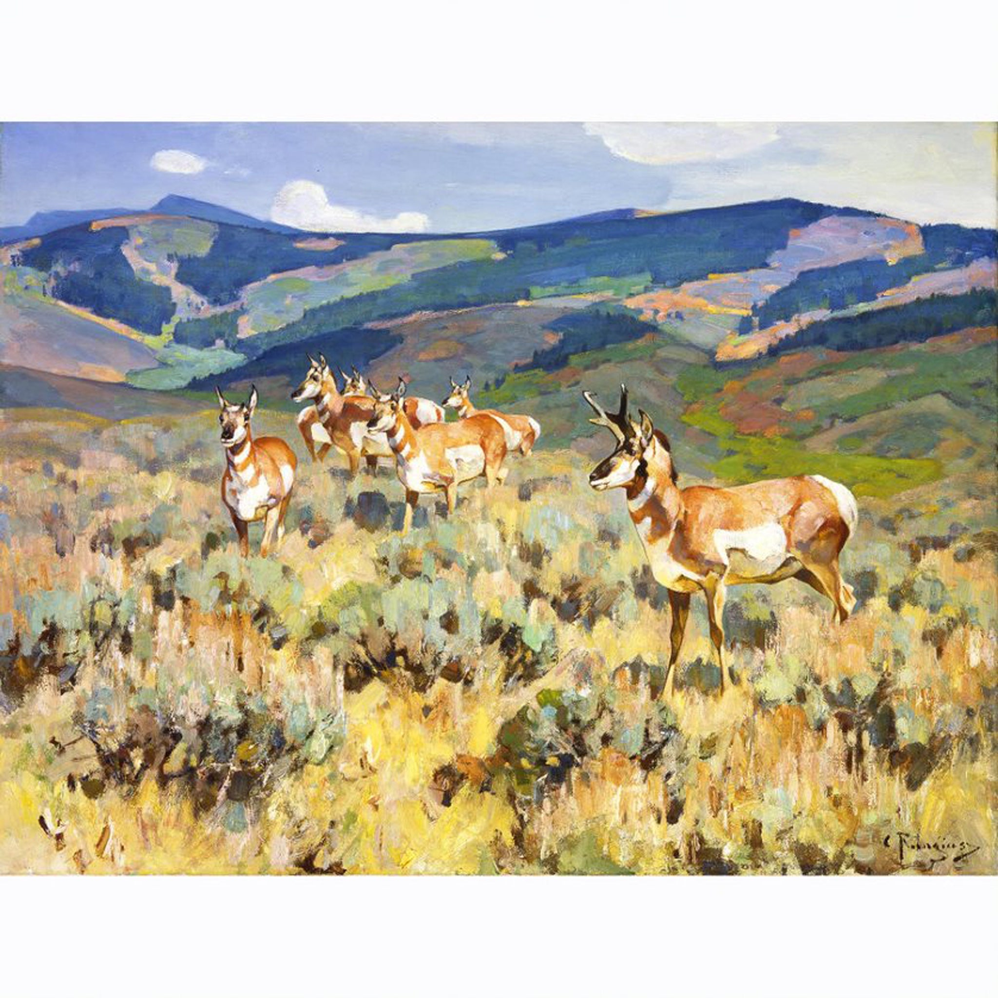 In the Foothills (Antelope) by Carl Rungius