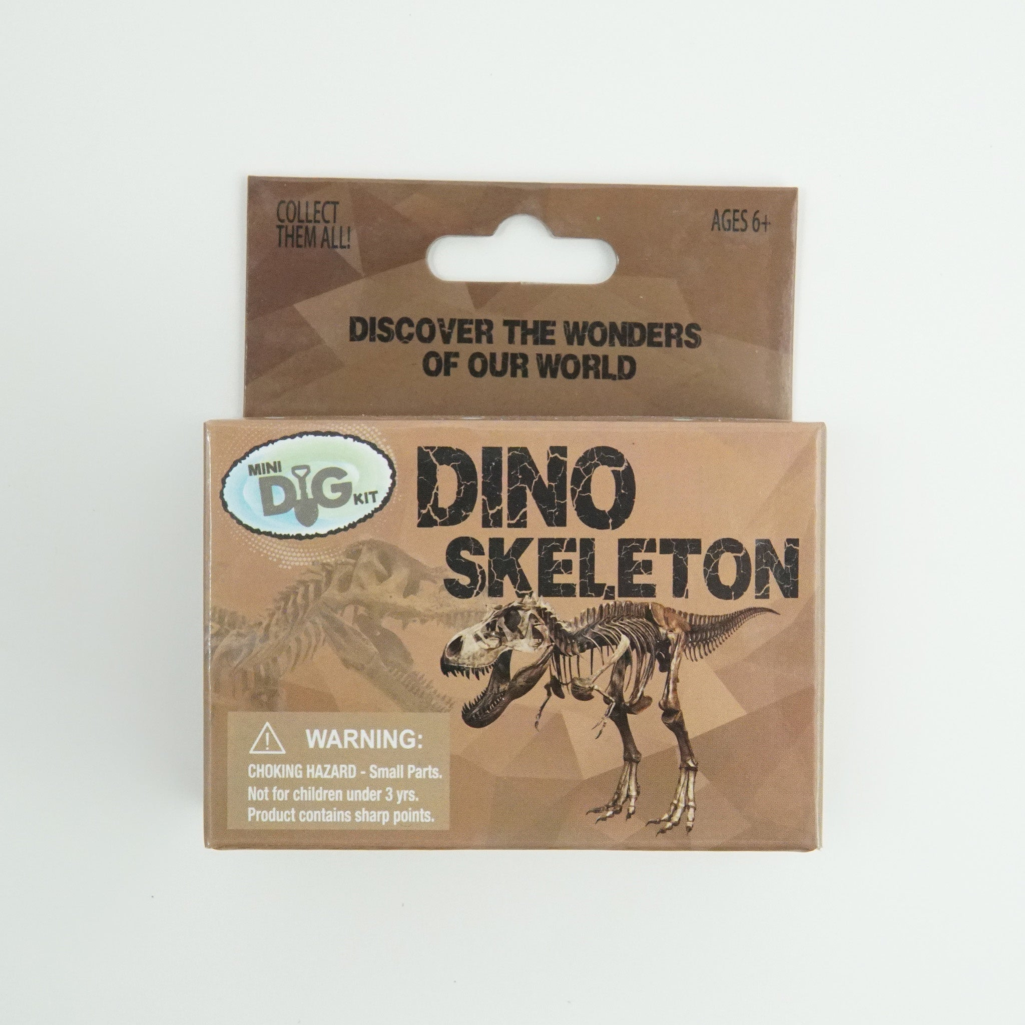 Mini Dinosaur Skeleton Dig Kit