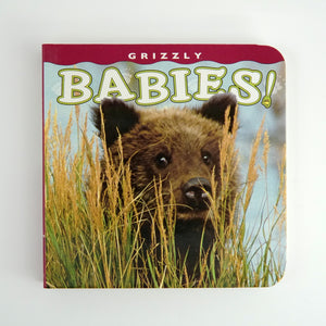 Grizzly Babies! by Henry H. Holdsworth