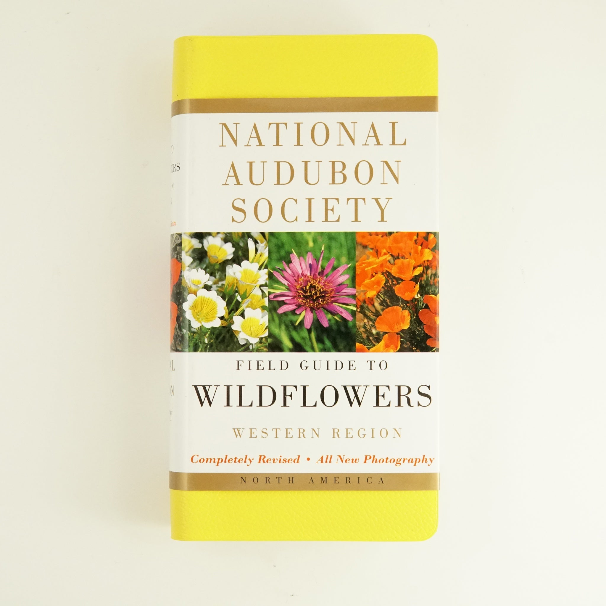 BK 13 FIELD GUIDE TO WILDFLOWERS