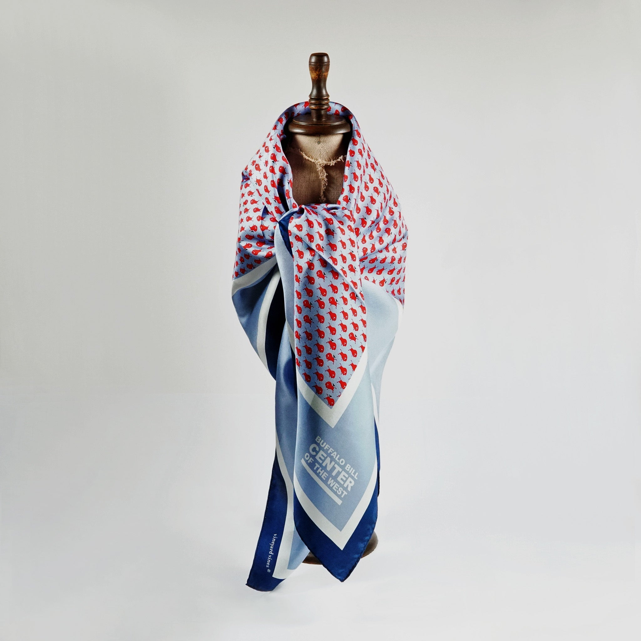 Periwinkle Center of the West scarf - 41047859