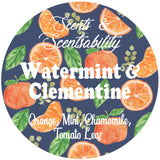 Watermint and Clementine Body Scrub